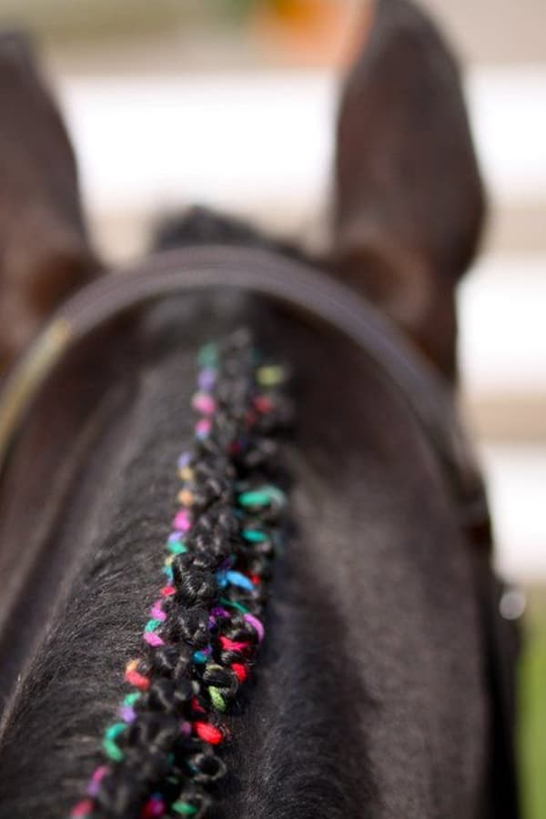 30 Horse Tail Braids Ideas 11