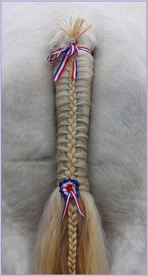 30 Horse Tail Braids Ideas 15