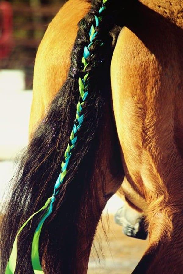 30 Horse Tail Braids Ideas 23