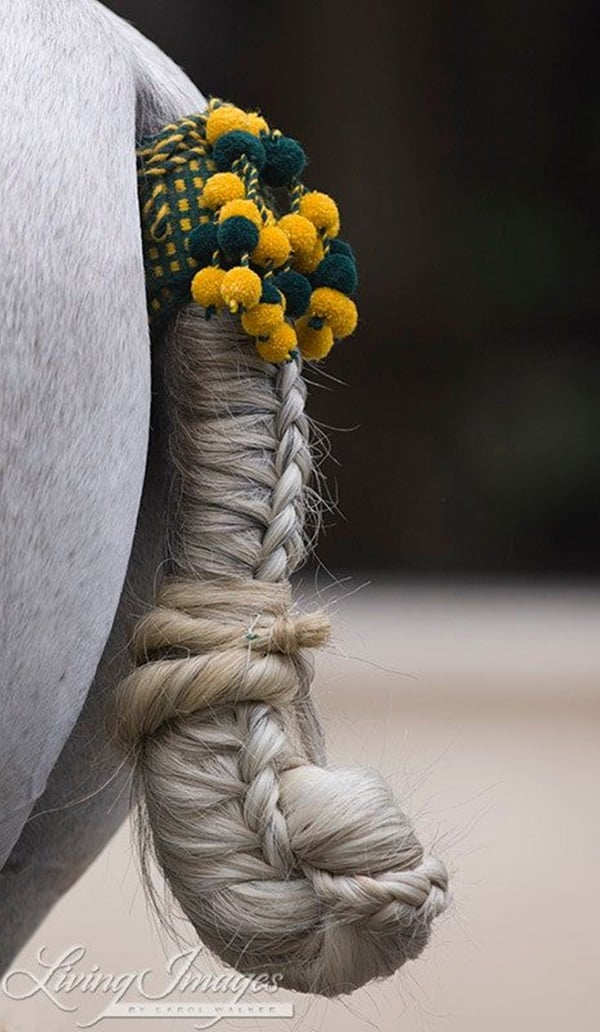 30 Horse Tail Braids Ideas 27