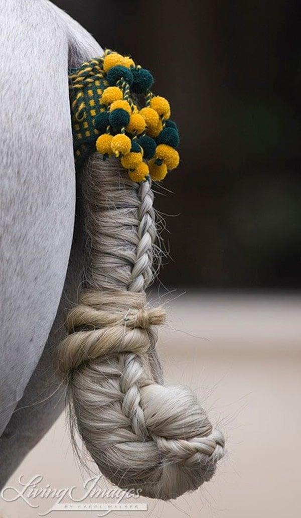 30 Horse Tail Braids Ideas 27