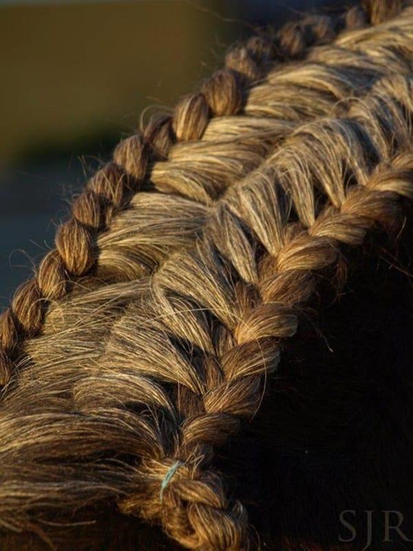 30 Horse Tail Braids Ideas 28