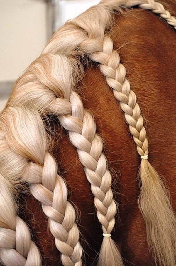 30 Horse Tail Braids Ideas 29