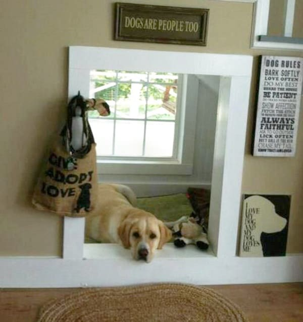 25 great ideas of dog house under staircase tail and fur for Dog room furniture