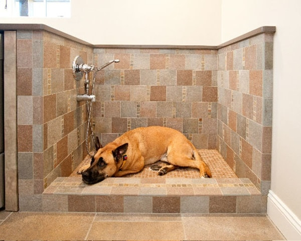 40 Easy Dog Wash Area Ideas 32