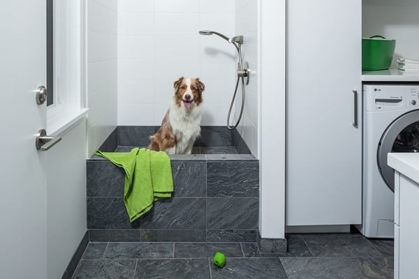 40 Easy Dog Wash Area Ideas 37