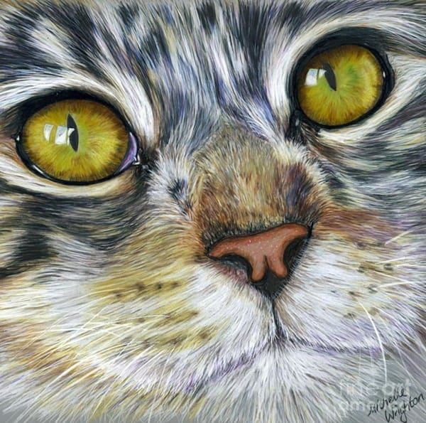 40 Great Examples of Cute and Majestic Cat Drawings 13