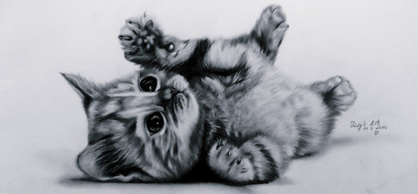 40 Great Examples of Cute and Majestic Cat Drawings 14