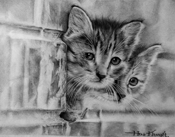 40 Great Examples of Cute and Majestic Cat Drawings 17
