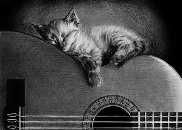 40 Great Examples of Cute and Majestic Cat Drawings 27