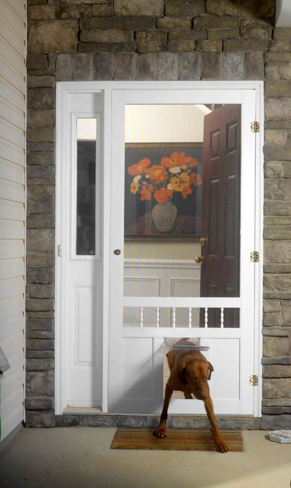 30 cool and classy pet door ideas tail and fur for Cool door ideas