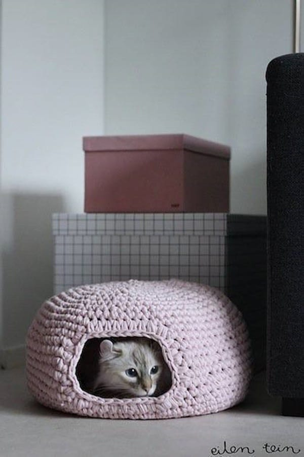 indoor cat house