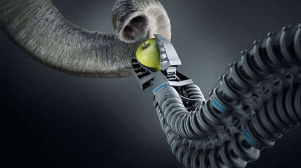 inventions-inspired-by-animals
