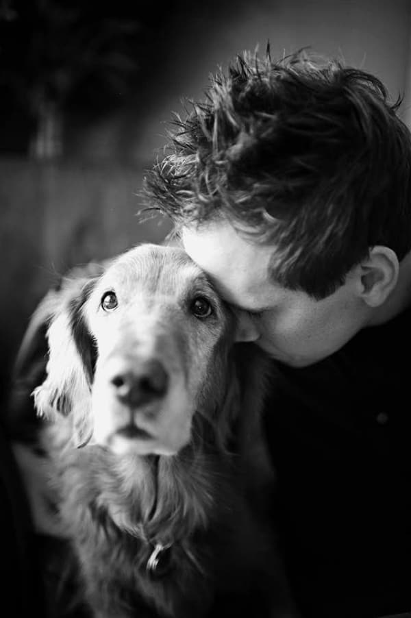 When-There-is-None-They-are-the-One-PETs-are-the-Best-Therapists