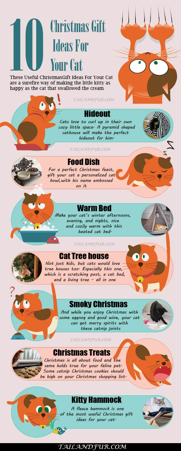 Christmas-Gift-Ideas-For-Your-Cat