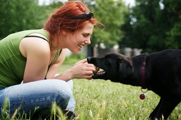 Stay Healthy With The Help Of Your Animal Friends (1)
