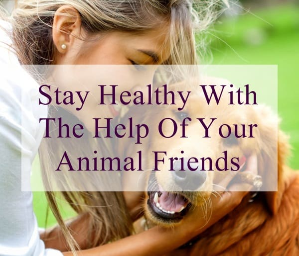 Stay Healthy With The Help Of Your Animal Friends (12)