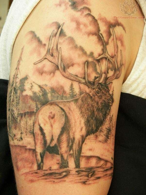 animasl wildlife tattoo