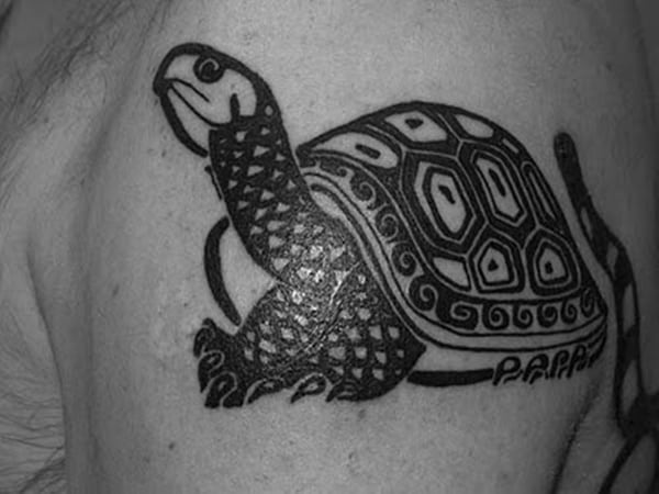 sea turtle tatoo (3)