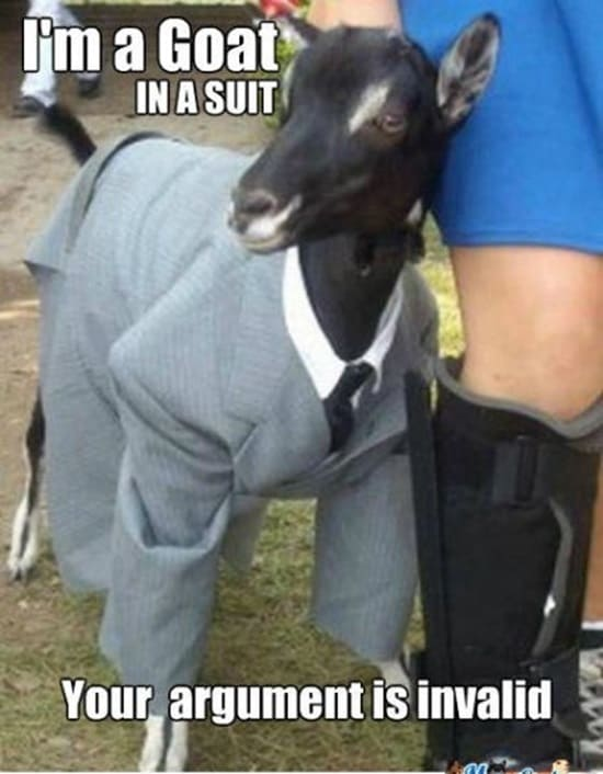 Funny goat pictures (25)
