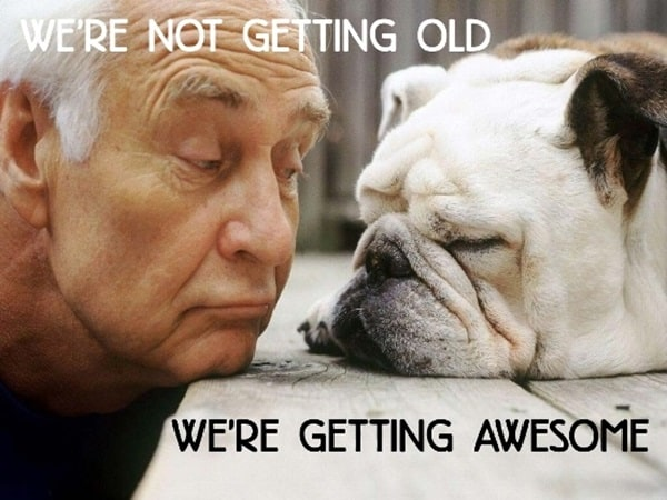Beautiful Pictures Of Old Age Animals (5)