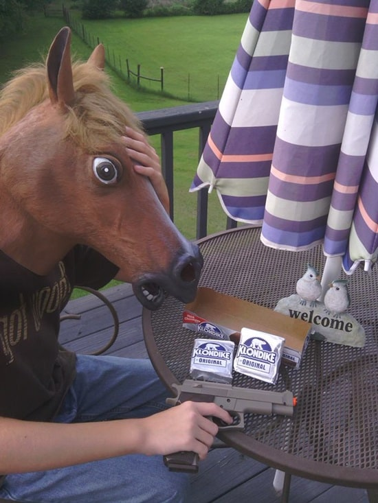funny horse mask pictures (16)