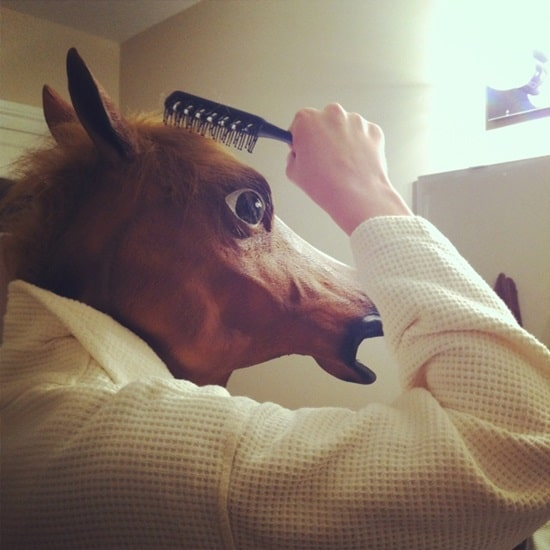 funny horse mask pictures (34)