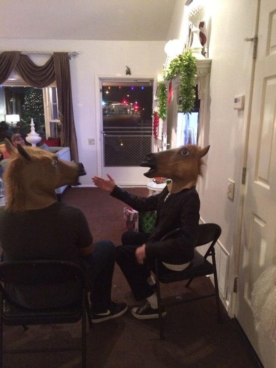 funny horse mask pictures (36)