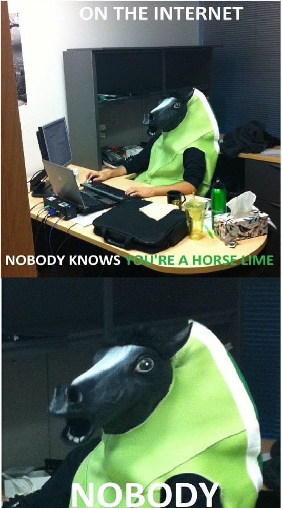 funny horse mask pictures (4)