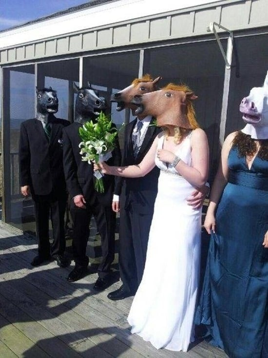 funny horse mask pictures (8)