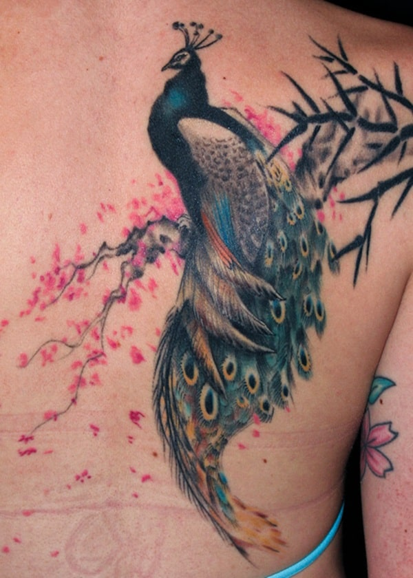 Pictures of Peacock Tattoos (30)
