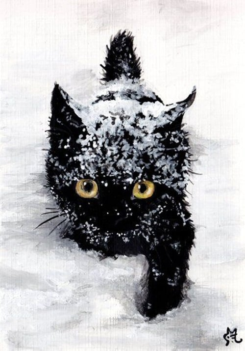 Pictures of Animals Playing with Snow (22)