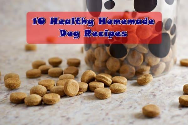 Homemade Dog Food Recipes Veterinary Nutritionist