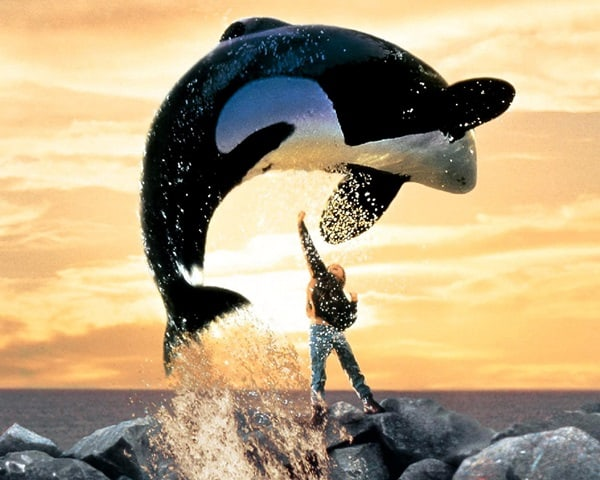 12 Must see movies for the animal lovers3