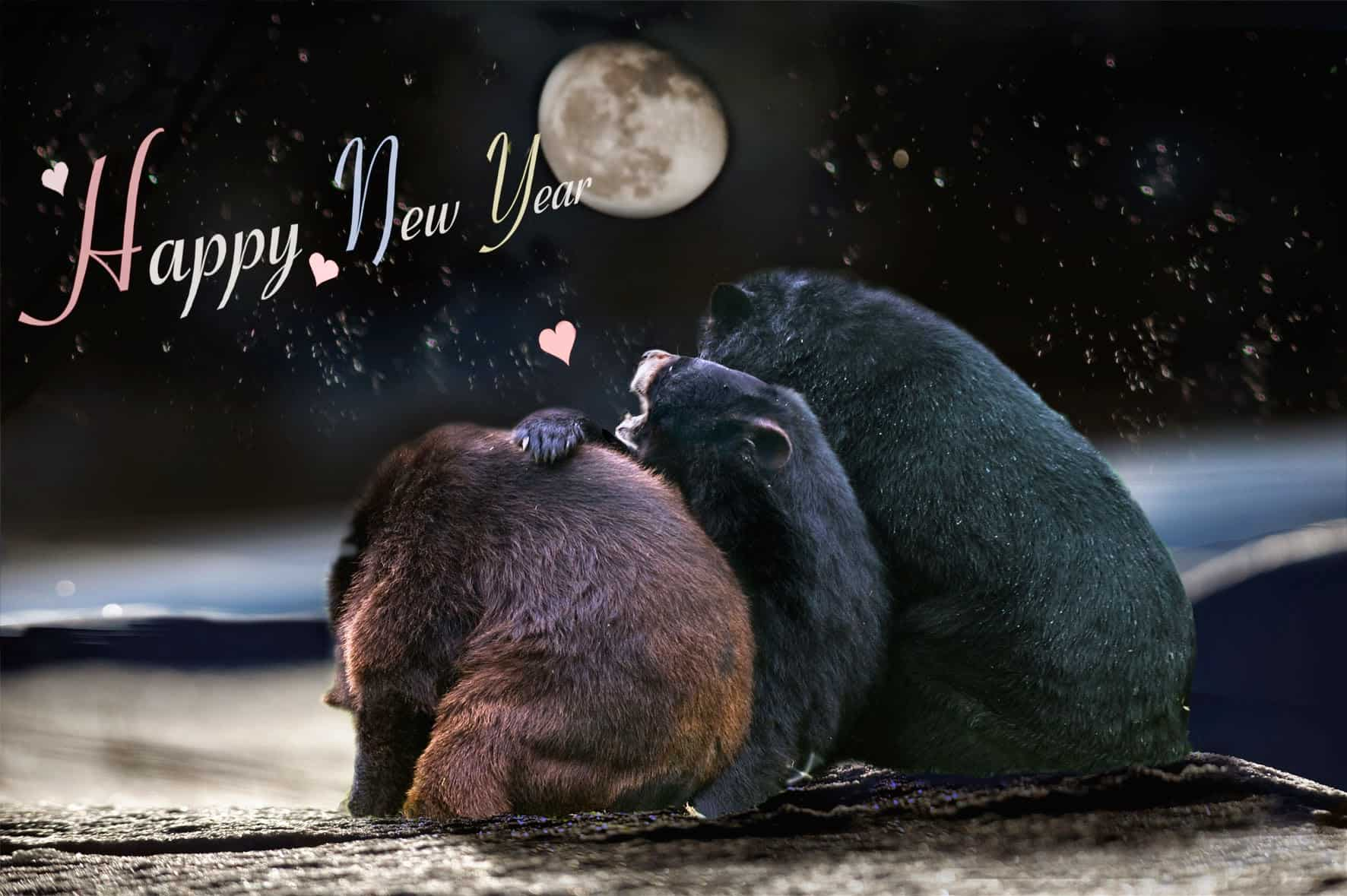animals new year wallpapers 16