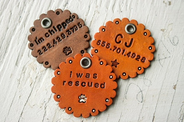 40 Cute Dog Tag Quotes and Ideas11