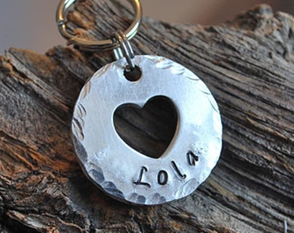 40 Cute Dog Tag Quotes and Ideas19