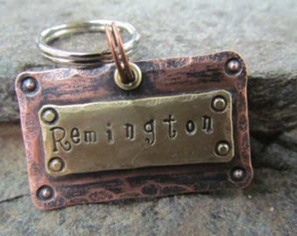 40 Cute Dog Tag Quotes and Ideas25