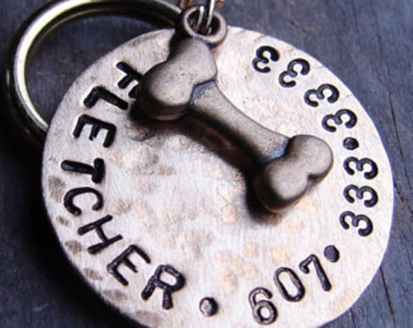 40 Cute Dog Tag Quotes and Ideas26