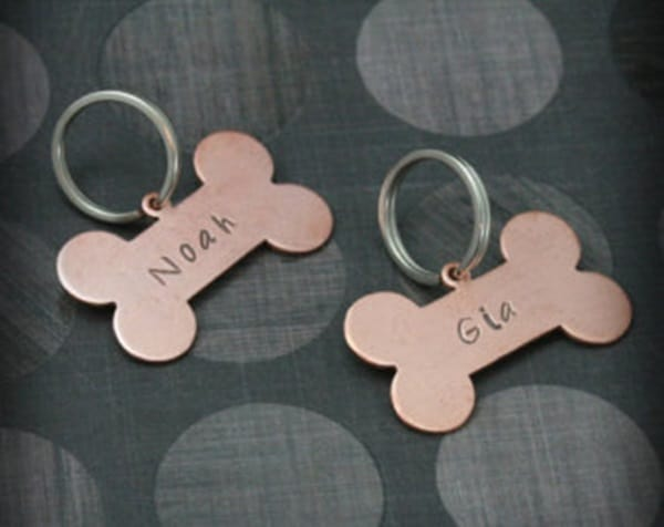 40 Cute Dog Tag Quotes and Ideas32