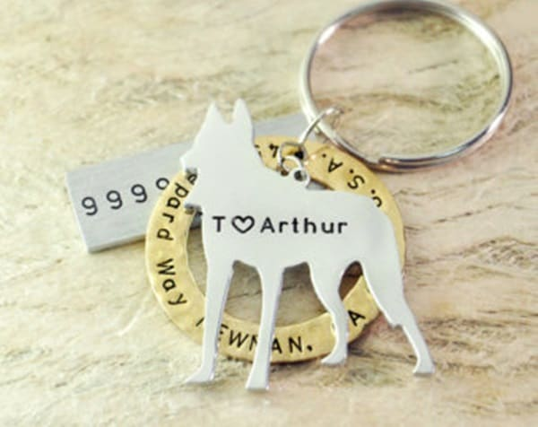 40 Cute Dog Tag Quotes and Ideas37