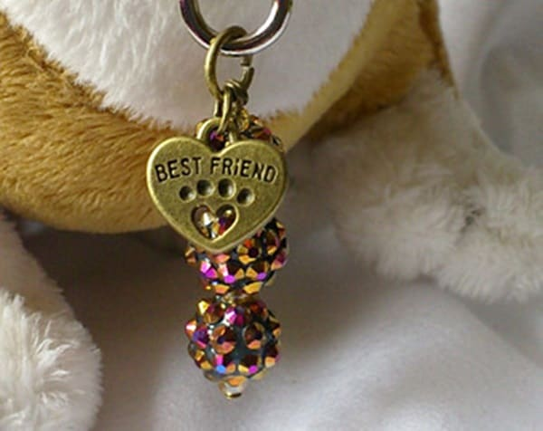 40 Cute Dog Tag Quotes and Ideas39