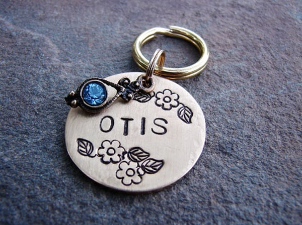 40 Cute Dog Tag Quotes and Ideas7