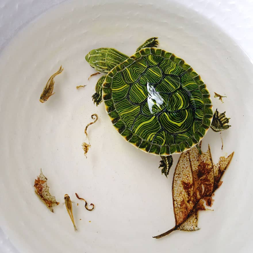 Hyper Realistic 3D Paintings of Aquatic Animals (10)