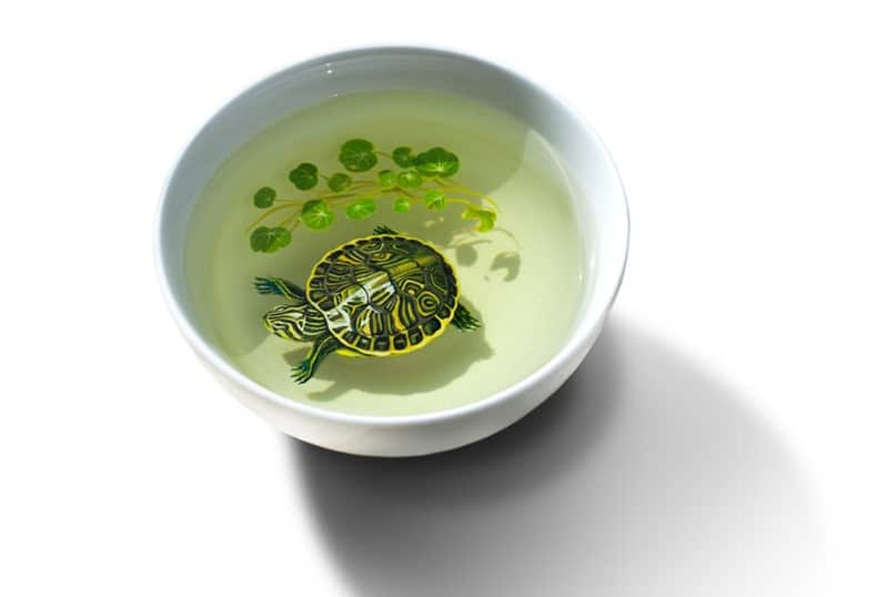 Hyper Realistic 3D Paintings of Aquatic Animals (5)