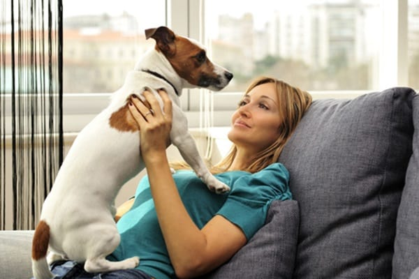 Understand Dog Bond Language and Verbal Clues1