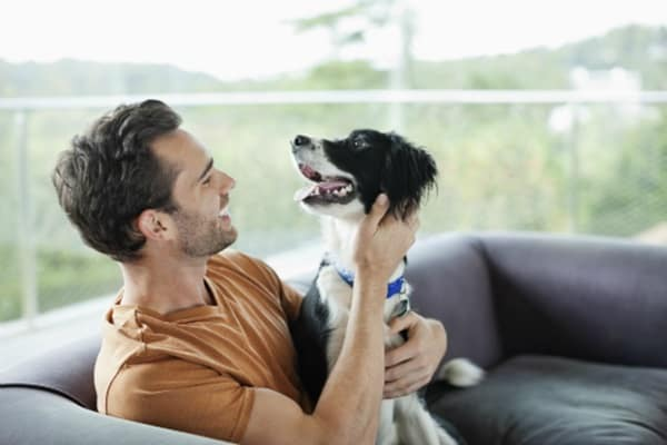 Understand Dog Bond Language and Verbal Clues11