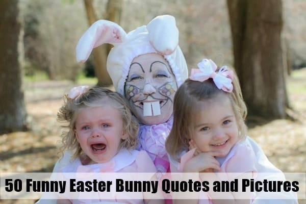 50 funny easter bunny quotes and pictures