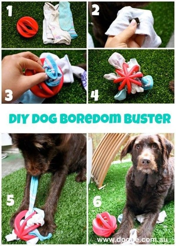 20 DIY Dog Toys you Can Make at Home 19