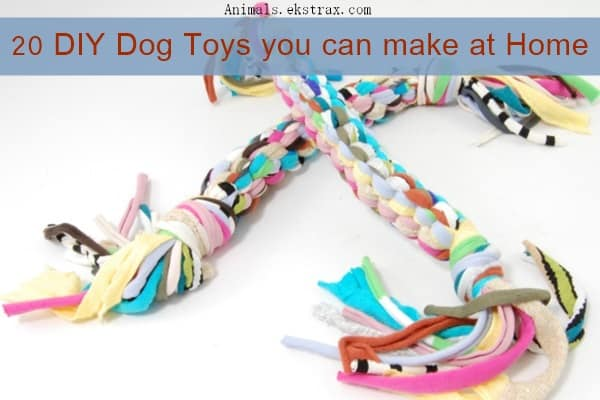 20 diy dog toys you can make at home